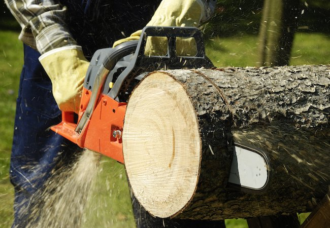 using chainsaw step by step