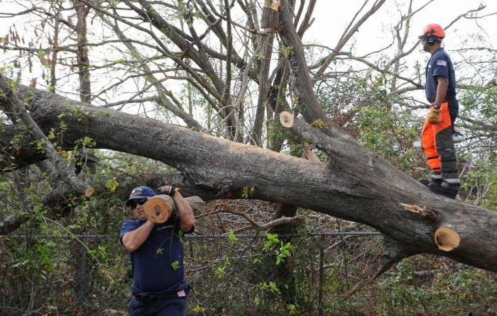 Ensuring a safe distance from a leaning tree